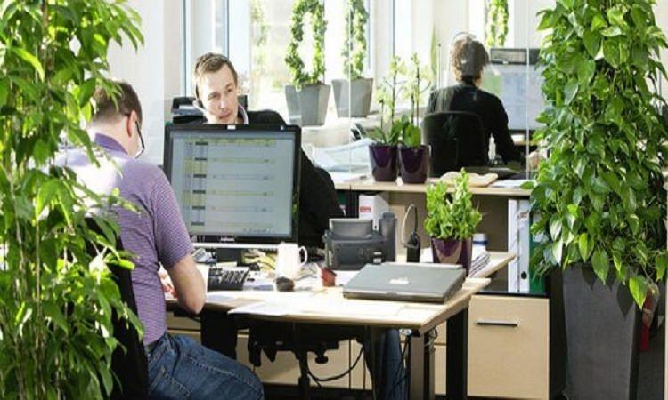 Създайте си приятна обстановка на работното място